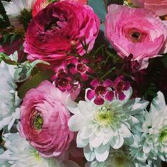 #luceelsol y hace un #frioquepela #ideal #saldeltrabajo #ven por #tusflores y #correpacasa #felizviernes!!!#freshflowers#pinkandwhite #fancy #floresfrescas #flowerscenterpiece #flowershop #style#interiorstyling #sweet #swethome #beautifulhouses#floristeriasmadrid #condeduque #flordelola#condeduquegente #Repost @flordelola2014