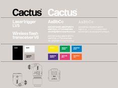 Cactus Identity