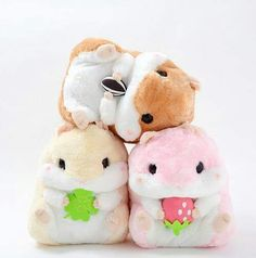 Hamsters so kawaii *-* Kawaii Shop, Kawaii Cute, Kawaii Stuff, Kawaii Things, Coron, Lolita Anime, Cute Stuffed Animals, Mode Shop, Hamsters