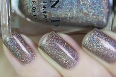 ILNP Fall 2015 Swatches
