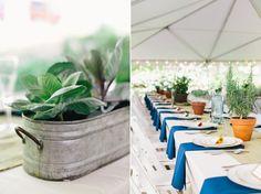 massachusetts-farm-wedding