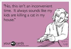 No, this isn't an inconvenient time. It always sounds like my kids are killing a cat in my house.