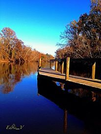 Beautiful picture of the Tar River at the Greenville Town Common. Photo taken and submitted by Edward Vera Briones.