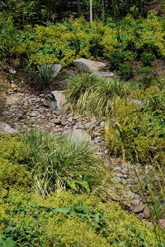 stormwater swale