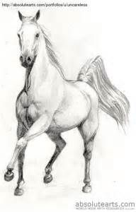 Horse sketch, pencil drawings of animals, horse drawings, art drawings, . Horse Pencil Drawing, Pencil Drawings Of Animals, Horse Drawings, Animal Sketches, Art Drawings, Sketches Of Horses, Pencil Art, Drawing Artist, Drawing Sketches