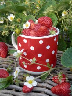 La maison du bonheur: 2016 Good Morning Images Flowers, Fruit Photography, Rose Frame, Fruit Arrangements, Red Gingham, World Of Color, Summer Art, Botanical Art, Fruits And Vegetables