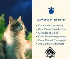 DCA Title provides title insurance and real estate related services for commercial and residential transactions throughout Minnesota and Wisconsin. Title Insurance, Insurance Agency, Happy Moving Day, Medical History, Wisconsin, Studio, Abstract, Pets, Animals