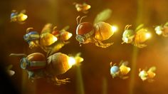 fire flies with christmas light bulbs for blinkers Lighting Bugs, Maze Game, Christmas Light Bulbs, Images Google, Frame Clipart, Wallpaper Backgrounds, Illustrators, Wings, Clip Art
