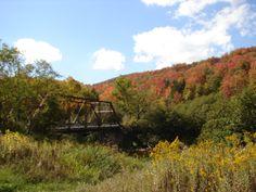 The Cheat Bridge