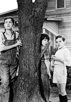 To Kill a Mockingbird (1962) I love this movie.......and book.