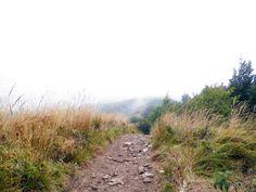 Zejście z Połoniny Wetlińskiej na Przełęcz Orłowicza. Mgła. Bieszczady Mountain Poland 2015. #Bieszczady #Mountain #PołoninaWetlińska