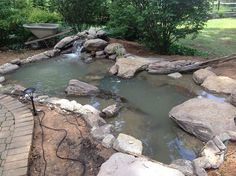building a pond, ponds water features