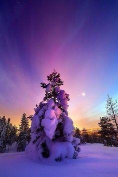 Earth Pics: Winter Sunset
