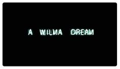 Wilma © Cynthia Wassink - 2016