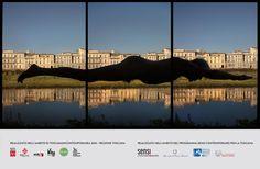 Riva, arte pubblica per la Firenze dell'Arno Arno, Triptych, Helsinki, Nature Scenes, Surrealism, Landscape Photography, Scenery, Swimming, Horses