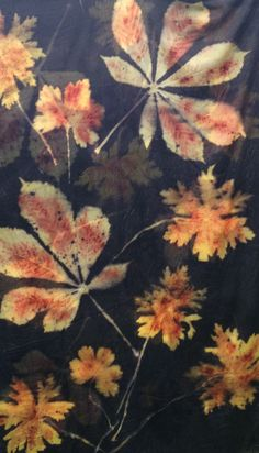 Image result for shibori sweet pea tangerine