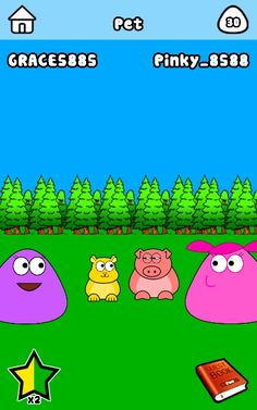 Pous and pets