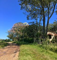 Piribebuy-Paraguay