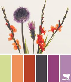Flora Bright - http://design-seeds.com/index.php/home/entry/flora-bright4
