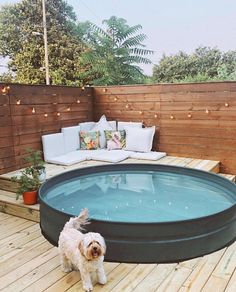 "Two summers ago, we did some investigating as to why stock tank pools were suddenly a thing: ""They've become the Mason jars of backyard… Stock Pools, Stock Tank Pool, Pool At Night, Diy Swimming Pool, Kiddie Pool, Mini Pool, Custom Decks, Backyard Makeover, Cool Pools"