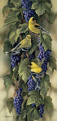 Pretty wall hanging....Vineyard-Goldfinches WildWings Rosemary Millette.