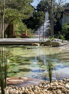If you are working with the best backyard pool landscaping ideas there are lot of choices. You need to look into your budget for backyard landscaping ideas Swimming Pool Pond, Natural Swimming Ponds, Swiming Pool, Luxury Swimming Pools, Natural Pond, Dream Pools, Swimming Pool Designs, Pool Spa, Piscine Diy