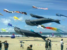 Lincoln City, Oregon - Kite Capitol of the Northwest