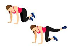 Tréninkový plán s 5 cviky na všechny svaly Vašeho zadečku   Blog   Online Fitness