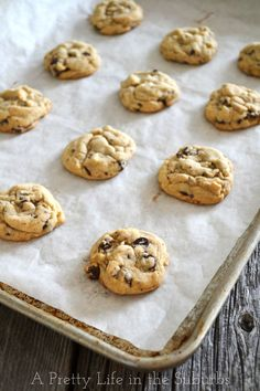 Chocolate Chip Cookies {A Pretty Life}:  Just a good old fashioned chewy chocolatey chocolate chip cookie!