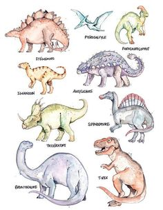 Large Poster Dinosaurs by Marie-Ève Arpin - Art. Nine amazing dinosaurs species rub shoulders on thi Dinosaur Drawing, Dinosaur Art, Dinosaur Crafts, Dinosaur Types, Dinosaur Room Decor, Dinosaur Photo, Watercolor Animals, Watercolor And Ink, Reptiles