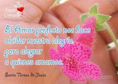 El buen amor es entrega...