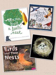 Great books about birds and nests! http://www.wondersinkindergarten.blogspot.ca/2014/09/how-do-birds-makes-nests.html