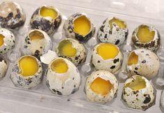 Cómo escalfar huevos de codorniz. Vídeo