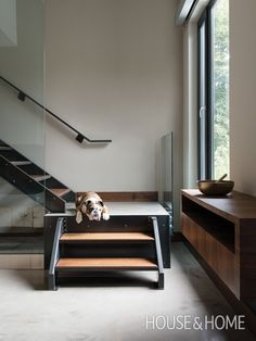 Standout Staircase | Designer: Eric McClelland | Photographer: Alex Lukey | #modern #sleek #wood #staircase #bulldog #contemporary