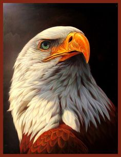 TAKE BACK OUR EAGLE..give them a duck!