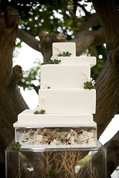 #White beach wedding #Wedding Cake Guide ... Wedding ideas for brides & bridesmaids, grooms & groomsmen, parents & planners ... https://itunes.apple.com/us/app/the-gold-wedding-planner/id498112599?ls=1=8 … plus how to organise an entire wedding, without overspending ♥ The Gold Wedding Planner iPhone App ♥