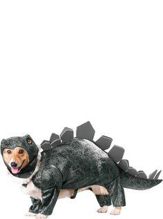 Kaufen Sie dieses tolle Hundekostüm Dinosaurier Stegosaurier in unserem online shop. Wir bieten günstige Preise und schnelle Lieferung.
