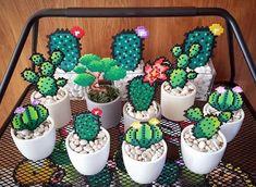 Sweet garden idea by pxlprincess cactus hama hamabeads garden summer garden Perler Bead Designs, Diy Perler Beads, Perler Bead Art, Hama Beads Design, Hama Beads Patterns, Beading Patterns, Loom Patterns, Bracelet Patterns, Embroidery Patterns