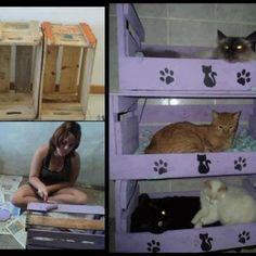 DIY cat condo! Soooo wanna do this!!