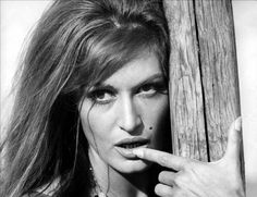 Dalida - Le temps des fleurs , Music, Art, Treasure of Liberal education, Literature, Pictorial Art, History, Known magnificent Musics