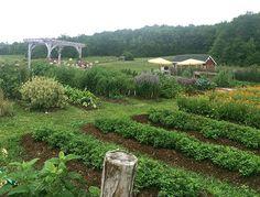 Tata Harper's Vermont farm | Gardenista: Current Obsessions: Embracing Winter