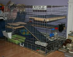 Repurposed dog crate for pet bunny!  I don't have a bunny but this is still a neat idea!  @Kyla Siebert maybe for Thumper?