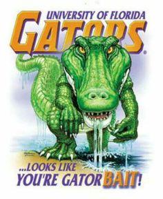 If your not a Gator, your Gator Bait Fla Gators, Florida Gators Football, Gator Football, University Of Florida Football, College Football, Florida Girl, Old Florida, Florida Gator Memes, Florida Gators Wallpaper