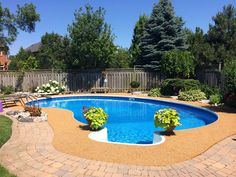That's a really great pool, I love the way it's shaped. The fact that there is a nice big part to walk in and out of is a plus. If I put plants around my pool the kids would knock them in and clog the filters with glass. It's best to keep those a few feet away at my house.