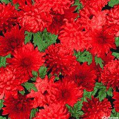 Fresh Market Flowers - Chrysanthemum Crush - Quilt fabrics from www.eQuilter.com