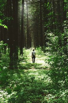 LOVE this!  There is pleasure in the pathless woods. There is rapture on the lonely shore. There is society where none intrudes. By the deep sea, and music in it's roar: I love not man the less, but Nature more.  ~Lord Byron