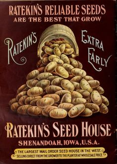 22d year : Ratekin's farm annual for 1906