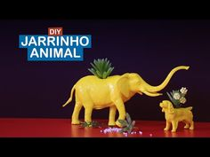 DIY : jarinho animal