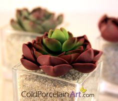 Succulents Centerpieces by ColdPorcelainArt