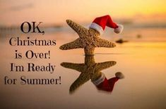 Ok Christmas Is Over I Am Ready For Summer Quote funny quotes summer quote jokes lol funny quote funny quotes funny sayings humor day after christmas Christmas Is Over, Christmas In July, Christmas Humor, Merry Christmas, Xmas, Christmas Beach Photos, Beach Christmas Cards, Christmas Quotes Funny Humor, Funny Winter Quotes